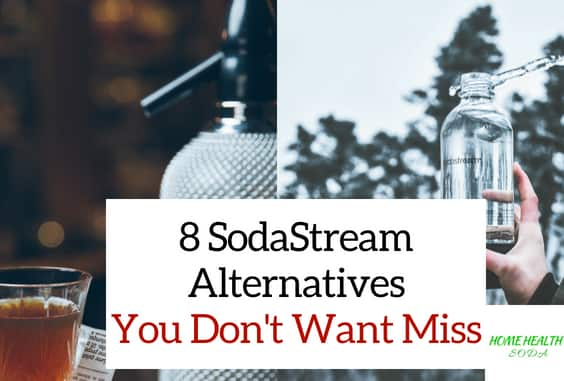 8 Amazing SodaStream Alternatives That are Better (2021)