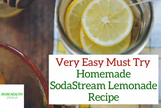 Easy Homemade SodaStream Lemonade Recipe (With Video)